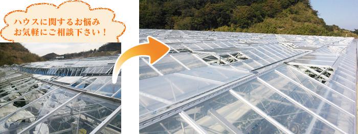農業用ハウス増改築イメージ画像